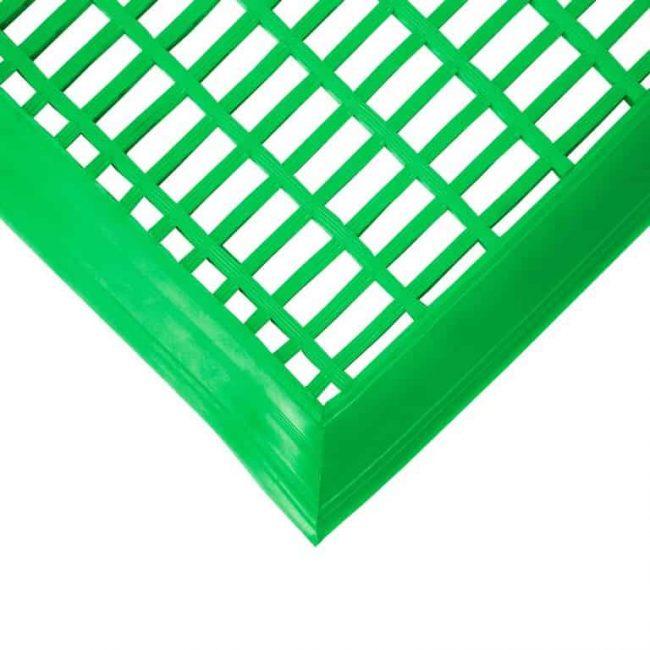 mata basenowa zielona